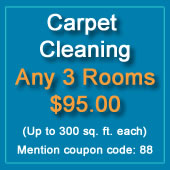 carpet cleaning discount